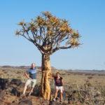 kokerboomwoud_review_namibie